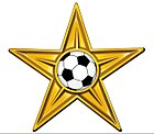 Gold Football Barnstar Hires 03.jpg
