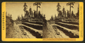 Grading the Central Pacific Railroad. The cut at Owl Gap, Placer County, by Thomas Houseworth & Co..png