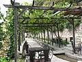 Grape Alley - Виноградная аллея - panoramio.jpg