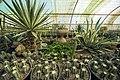 Greenhouses in qom عکس های گلخانه دنیای خار در روستای مبارک آباد قم 12.jpg