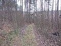 Grigiškės, Lithuania - panoramio (173).jpg