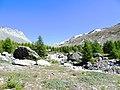 """Grinjesee's area's sight toward """"Findelgletscher"""" on summer - panoramio (1).jpg"""