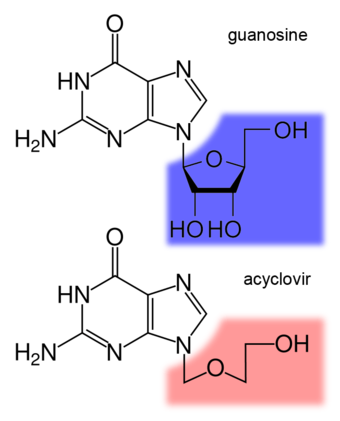 The structure of the DNA base guanosine and the antiviral drug acyclovir Guanosine-acyclovir-comparison.png