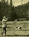 Guns and gunning (1908) (14782258862).jpg