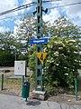 HÉV station, speed limit railway sign, name sign, 2020 Mogyoród.jpg