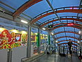 HK SYP Centre Street evening Escalators interior visitor Dog owner walking Mar-2014.JPG