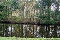 Haagse Bos 7.jpg