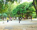 Haikou People's Park - people playing jianzi - 01.jpg