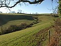 Head of valley by Combe Lane - geograph.org.uk - 1188474.jpg