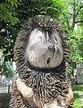 Hedgehog - horse.jpg