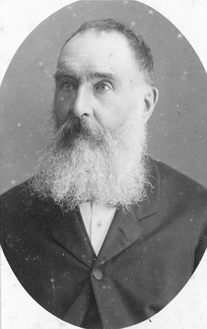 Henry Tancred (New Zealand politician) - Henry John Tancred ca 1882