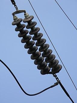 High Voltage Transmission Line Insulator - Howrah 2011-03-19 1874