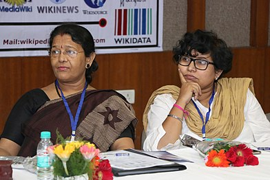 Hindi Community Salon for Wikimedia Strategy-Discussions Sessions (4).jpg