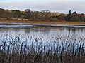 Hirsel Lake - geograph.org.uk - 1078478.jpg