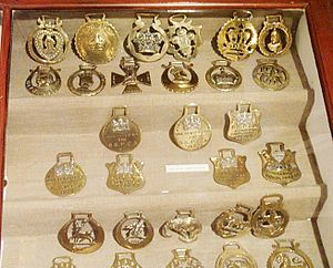 Horse brass - Display of English brasses
