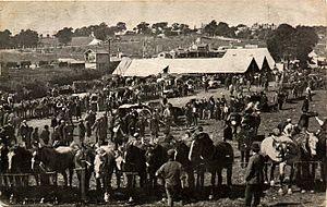 Barnet Fair - Barnet horse fair