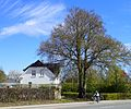 Hus i Hasle.jpg