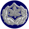 IDF RASAL Avir.png