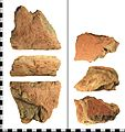 IOW-674AF8 Roman Ceramic Floor Tile (FindID 490578).jpg
