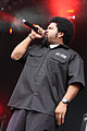 Ice Cube (7080143819).jpg