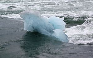 English: An iceberg stuck in the river that dr...