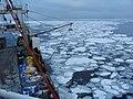 Icebreaker ship - 2008 (1315).jpg