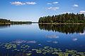 Iijoki Yli-Ii Finland.jpg