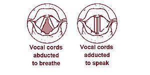 paraziți cu coarde vocale