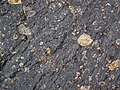 Impact breccia (Sandcherry Member, Onaping Formation, Paleoproterozoic, 1.85 Ga; High Falls roadcut, Sudbury Impact Structure, Ontario, Canada) 32 (33882785898).jpg