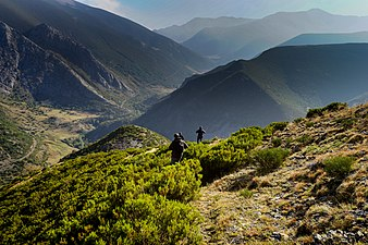 In search of Wolves in the Picos de Europa.jpg
