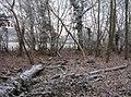 Inside Upper River Row - geograph.org.uk - 1122886.jpg