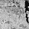 interieur, muur, detail - appingedam - 20000939 - rce