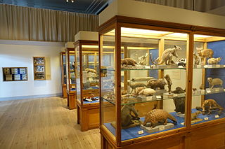 Natural history museum institution that displays exhibits of natural historical significance