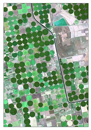 Landsat 8 - The picture is satellite image of irrigated crops and Kahov irrigation canal. It is captured 7-Aug 2015 by Landsat8 (OLI). The image is created as True Color Composite, where R – Red Band (0.64 - 0.67 µm), G – Green Band (0.53 - 0.59 µm) and B – Blue Band (0.45 - 0.51 µm). This band combination is suitable for crop monitoring. For emphasizing characteristics, the image was pan-sharpened by panchromatic band. Nonlinear adaptive procedure of contrasting was applied too.