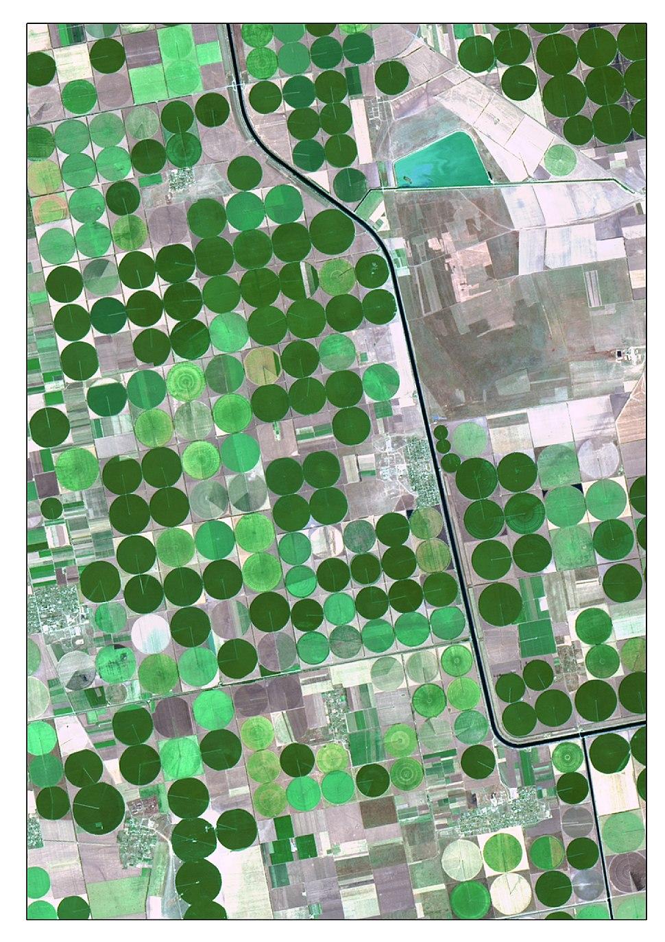 Irrigation Landsat8