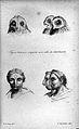 J.C. Lavater, L'Art de connaitre les hommes... Wellcome L0025300.jpg