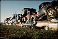JUNKED AUTOMOBILES ARE PILED THREE DEEP ALONG FENCE - NARA - 545340 colorcorr.jpeg