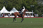Jaeger-LeCoultre Polo Masters 2013 - 31082013 - Match Legacy vs Jaeger-LeCoultre Veytay for the third place 28.jpg