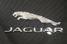 Jaguar - logo (MSP16).jpg