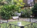 JardinBotanicovalencia2008.JPG