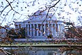 Jefferson Memorial - through cherry blossoms - 2012-03-15 (6995054329).jpg
