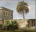 Johan Christian Dahl - Palm Tree behind a Wall - NG.M.00530 - National Museum of Art, Architecture and Design.jpg