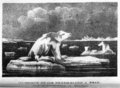 Journal of a Voyage to Greenland, in the Year 1821, plate 11.png