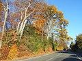 Junction of Weydown Road and Derby Road, Haslemere.jpg