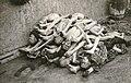 KZ Buchenwald 1945 - 004.jpg