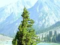 Kalam valley 2013 03.jpg