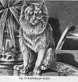 Kartäuserkatze 1896 ,Jean Bungartz.jpg