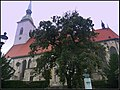 Katedra św. Marcina w Bratysławie - panoramio (1).jpg