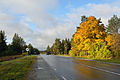 Keila-Haapsalu maantee Lemmaru Vasalemma piiril.jpg