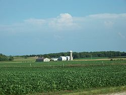 Soybean fields in the United States